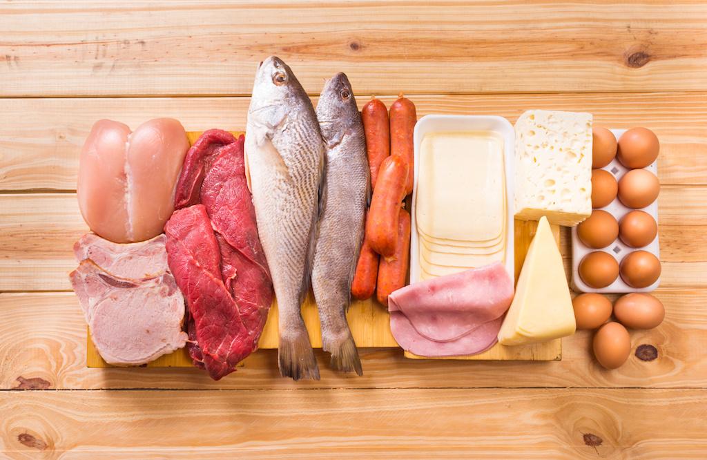 タンパク質の食品