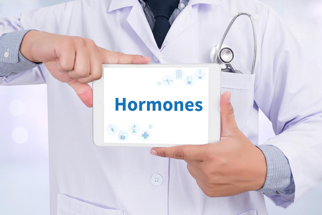 ホルモンの文字
