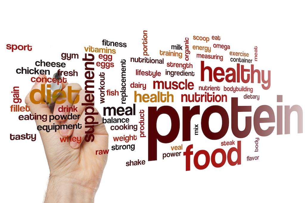 タンパク質など栄養素のグラフィック