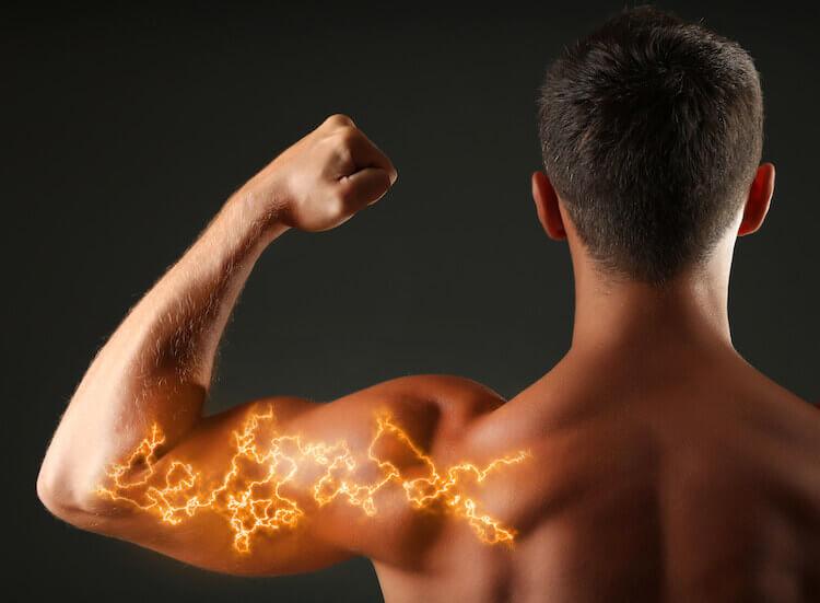 hmbの筋肉への効果