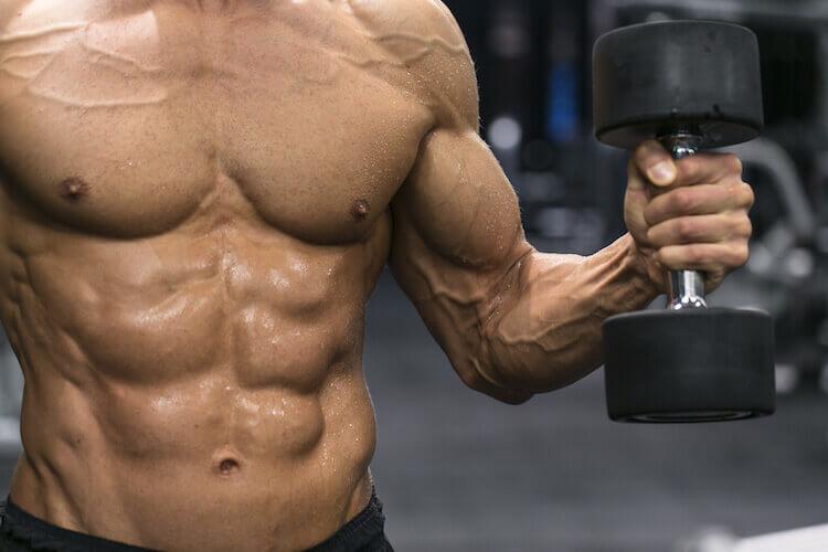 筋肉の分解を抑える