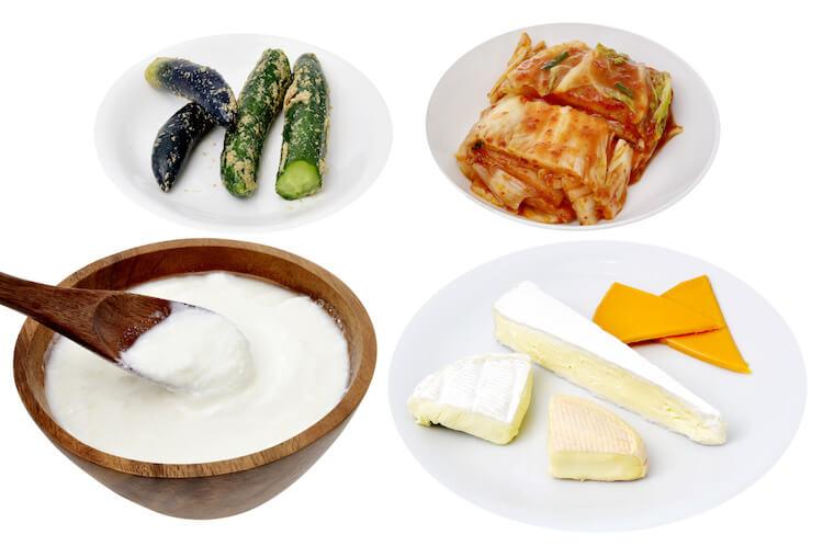 プロバイオティクス食品