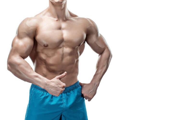筋肉の分解防止