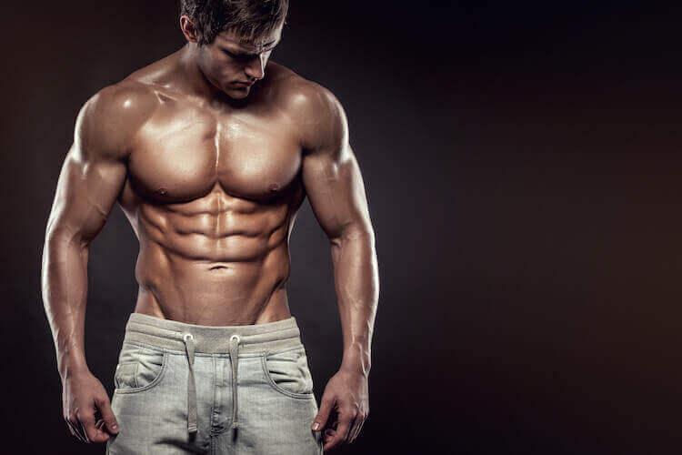 脂肪の少ない体